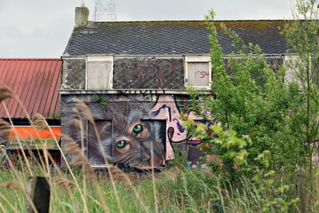Work by an unknown artist in Doel.